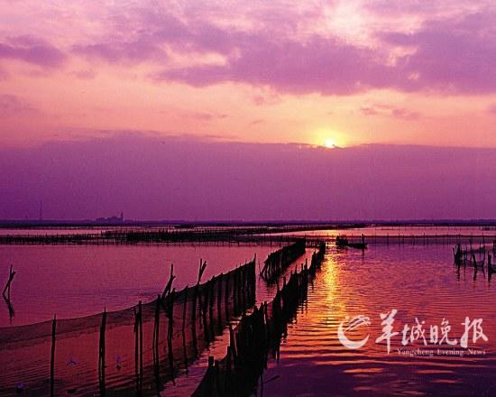阳澄湖的晚霞(东方ic)