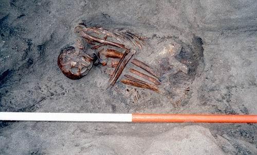 ...体骨骼像拼图玩具一样拼凑在一起,看上去像是一个人的尸体.