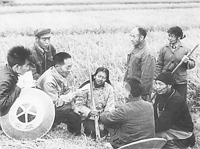 早期研究阶段,袁隆平(左三)在田间为农民讲课.