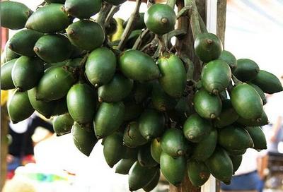 """槟榔可食用可入药 其成不合格药品""""重灾区"""""""