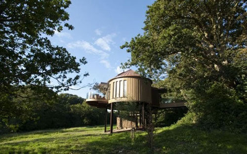 树屋均建造在树木的华盖上