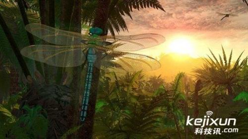 史前蜻蜓翼展70厘米 大小堪比乌鸦