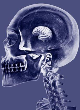 这个科研小组认为,持续的基因突变对我们的智力造成伤害