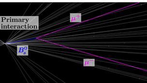 一个Bs介子衰变成为两个μ介子,这种现象极其罕见